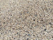 Pebbles and shells as beach background Royalty Free Stock Photos