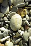 Pebbles upon  the shore Royalty Free Stock Image