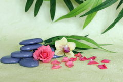 pebbles stacked in zen life fashion with a pink flower and an orchid on green and foliage background Royalty Free Stock Photo