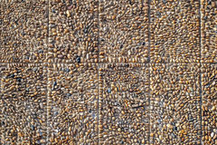 Pebbles stone wall Stock Photography