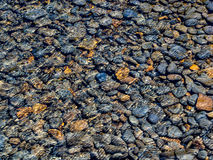 Pebbles in stream Royalty Free Stock Photos