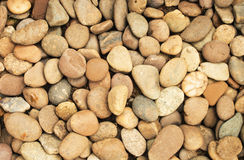 Pebbles texture or background. Royalty Free Stock Images