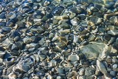 Pebbles under the clear sea water Royalty Free Stock Photography