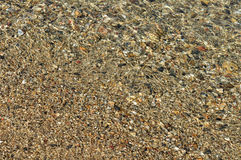 Pebbles under the clear sea water Stock Images