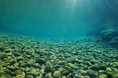 Pebbles underwater in river with clear freshwater Royalty Free Stock Images
