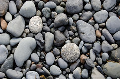Pebbles. Of various grays and whites fill up the image Royalty Free Stock Photography
