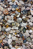 Pebbles and water Royalty Free Stock Image