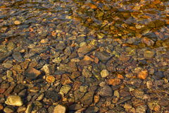 Pebbles through water Royalty Free Stock Photography