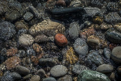 Pebbles and Water Royalty Free Stock Photography