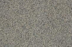 pebbletexturvägg arkivfoto