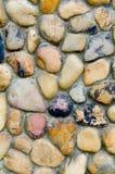 pebblevägg Royaltyfri Fotografi