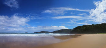 Pebbly beach (NSW, Australia). Known for kangaroos who lives there Royalty Free Stock Photography