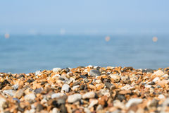 Pebbly beach. On a summer day Royalty Free Stock Photos