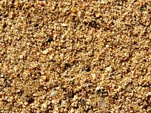 Pebbly sand texture background Stock Images