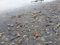 Pebbly strand Arkivfoton