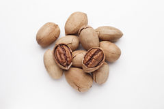 Pecan. Isolated on a white background Royalty Free Stock Images