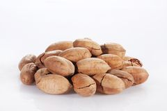 Pecan. A heap of pecan on white background Royalty Free Stock Photography