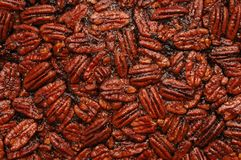 Pecan Background. Delicious homemade pecan pie (close-up Royalty Free Stock Photography