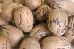 Pecan background. Shot of pecans for background Royalty Free Stock Photography