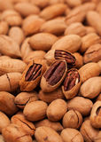 Pecan background Stock Photos