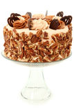 Pecan Caramel Chocolate Cake Decorated Stock Photography