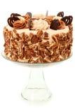 Pecan Caramel Chocolate Cake Decorated stock photography