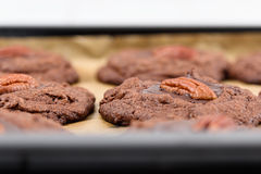 Pecan Chocolate Cookies In Tray Royalty Free Stock Photography
