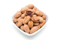 Pecan (Clipping path)  Royalty Free Stock Photos