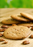 Pecan Cookies. Delicious home made pecan cookies with whole pecan royalty free stock photo