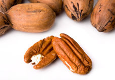 Pecan Halves and in the Shell. Whole pecans in the shell with shelled pecan halves royalty free stock images