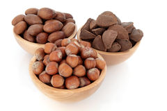 Pecan, Hazelnut and Brazil Nuts Royalty Free Stock Photography
