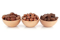 Pecan, Hazelnut and Brazil Nuts Stock Images