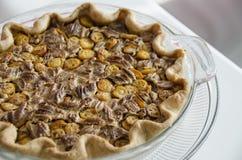 Pecan and kumquat pie Stock Images