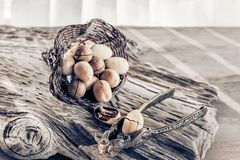 Pecan and macadamia nuts with a device for chopping nuts on a wooden background. Copy space.  stock photo