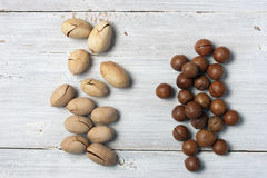 Pecan and macadamia nuts handfuls on the white background Royalty Free Stock Image