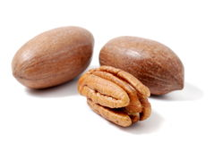 Pecan nut Royalty Free Stock Photo