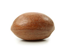 Pecan nut. Isolated on white background Stock Images