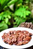 Pecan nut Stock Images