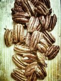 Pecan nut Stock Photography