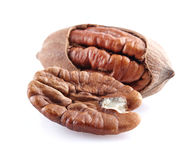 Pecan nut in closeup Royalty Free Stock Images