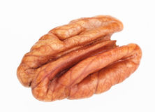 Pecan nut core Stock Image