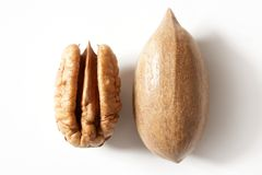 Pecan nut fruit and shell over white Stock Photos