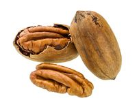 Pecan  nut  macro shot Royalty Free Stock Image