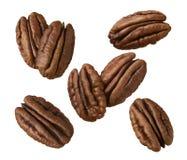 Pecan nut set isolated on white background Stock Photography