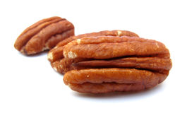 Pecan nuts. The nuts of the Pecan are edible, with a rich, buttery flavor. They can be eaten fresh or used in cooking, particularly in sweet desserts but also in Royalty Free Stock Images