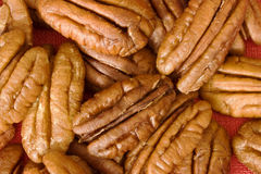 Pecan nuts. A closeup of whole pecan nuts Royalty Free Stock Photography