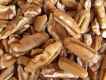 Pecan Nuts. Close up on raw shelled pecan nuts stock photography