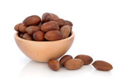 Pecan Nuts Stock Photos