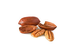 Pecan nuts Royalty Free Stock Image