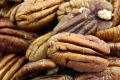 Pecan nuts background Royalty Free Stock Photo
